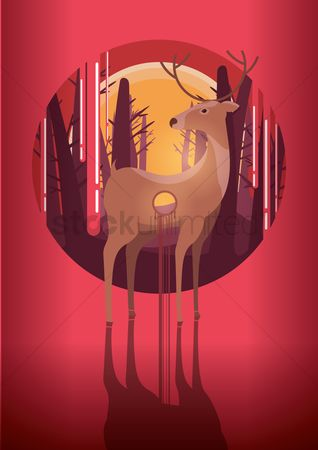 Drips : Shot deer