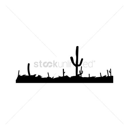 Cactuses : Silhouette of cacti in the dessert