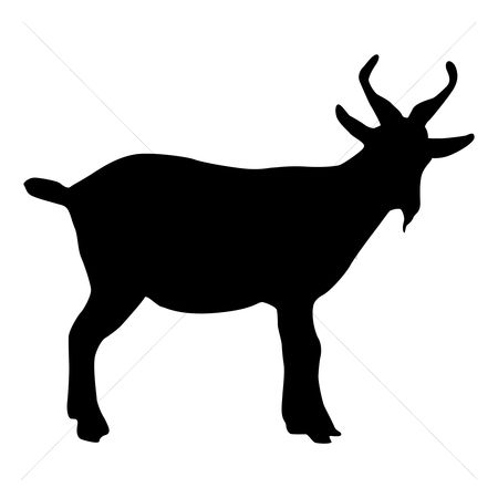 Cutout : Silhouette of goat