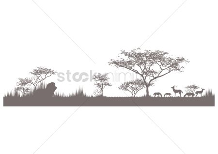 Antelopes : Silhouette of wildlife in their natural habitat