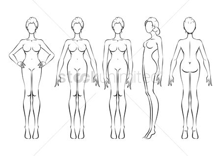 Graphic : Sketch of a woman s figure