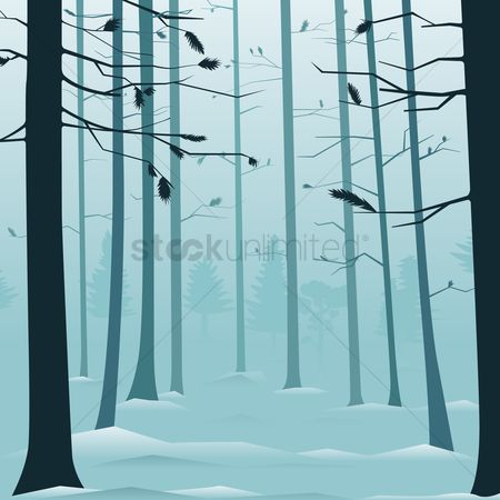 Season : Snowy forest