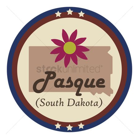 Dakota : South dakota state with pasque flower
