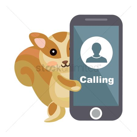 Calling : Squirrel calling on smartphone