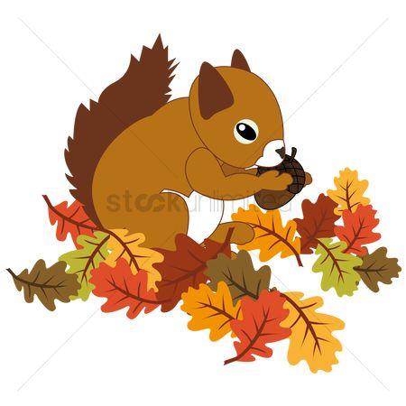 free squirrel stock vectors stockunlimited