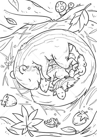 Sketching : Squirrel with infant squirrels