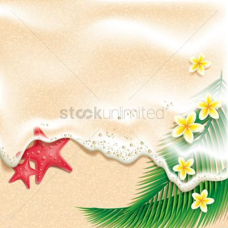 Places : Starfishes flowers and leaves on beach background