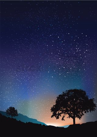 Wallpaper : Stars background with tree