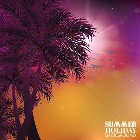 Sunray : Summer holiday background