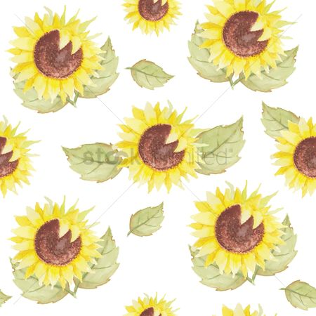 Wall : Sunflowers background