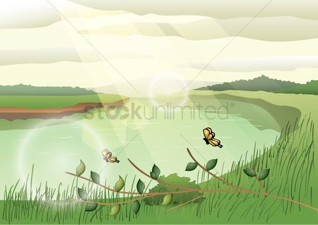 Sunray : Sunny landscape with butterfly