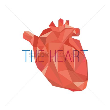 Health cares : The heart