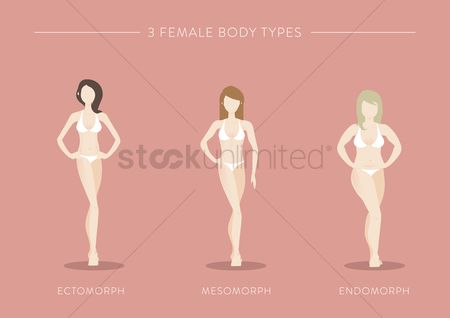Weight : Three female body types