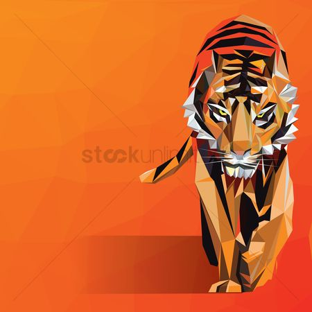 Gradients : Tiger