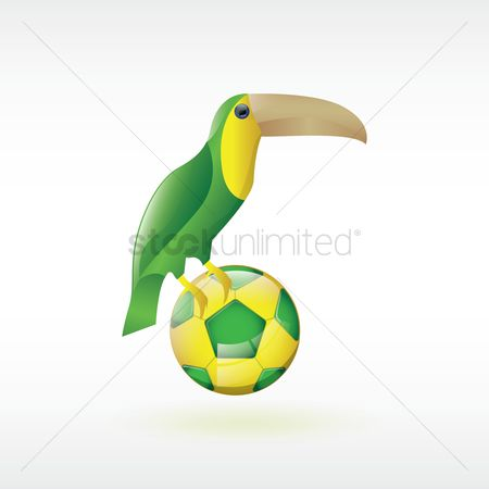 Toco toucan : Toco toucan with soccer ball