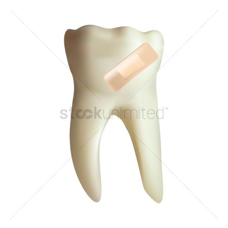 Dentist : Tooth with a plaster