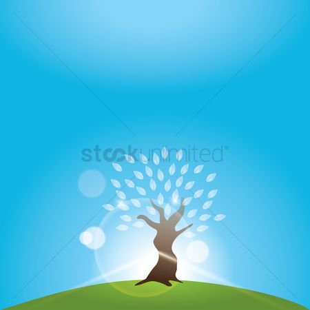 Sunray : Tree background