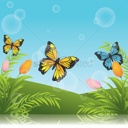 Spring : Tulips with butterflies background