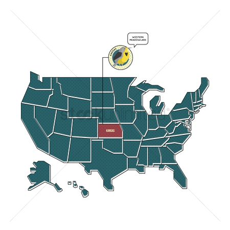 Kansas : Us map with kansas state bird