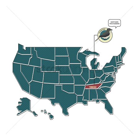 Tennessee : Us map with tennessee state bird
