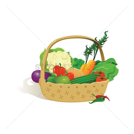 Fresh : Vegetables in basket