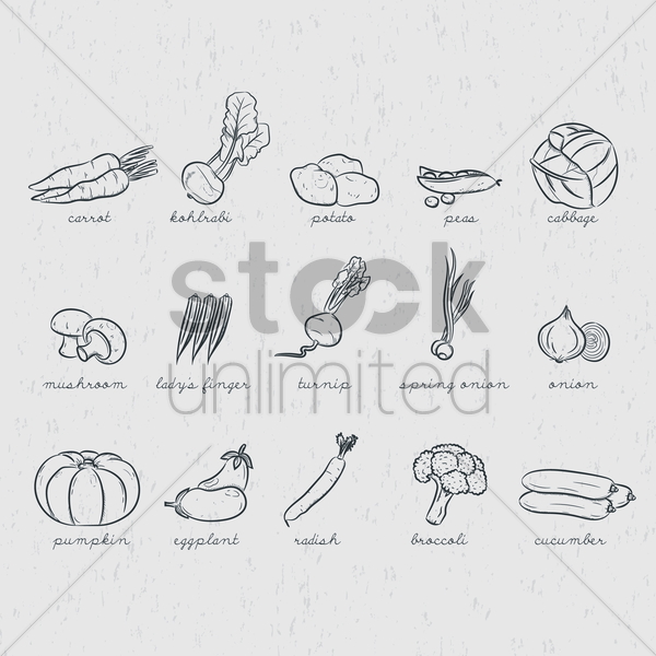 collection of vegetables vector graphic