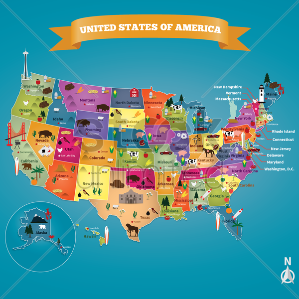 usa map with states vector graphic