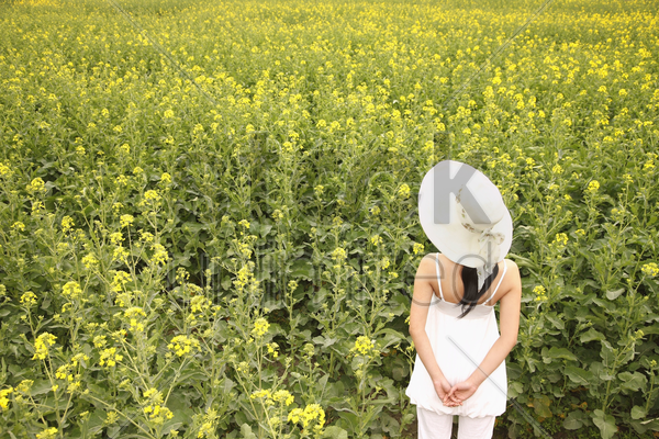 woman with hat enjoying the view of rape field stock photo