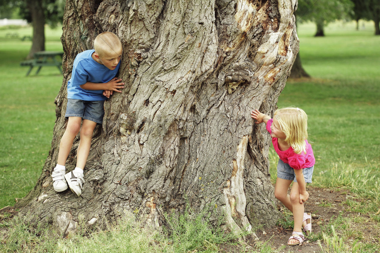children playing hide and seek stock photo 1677291