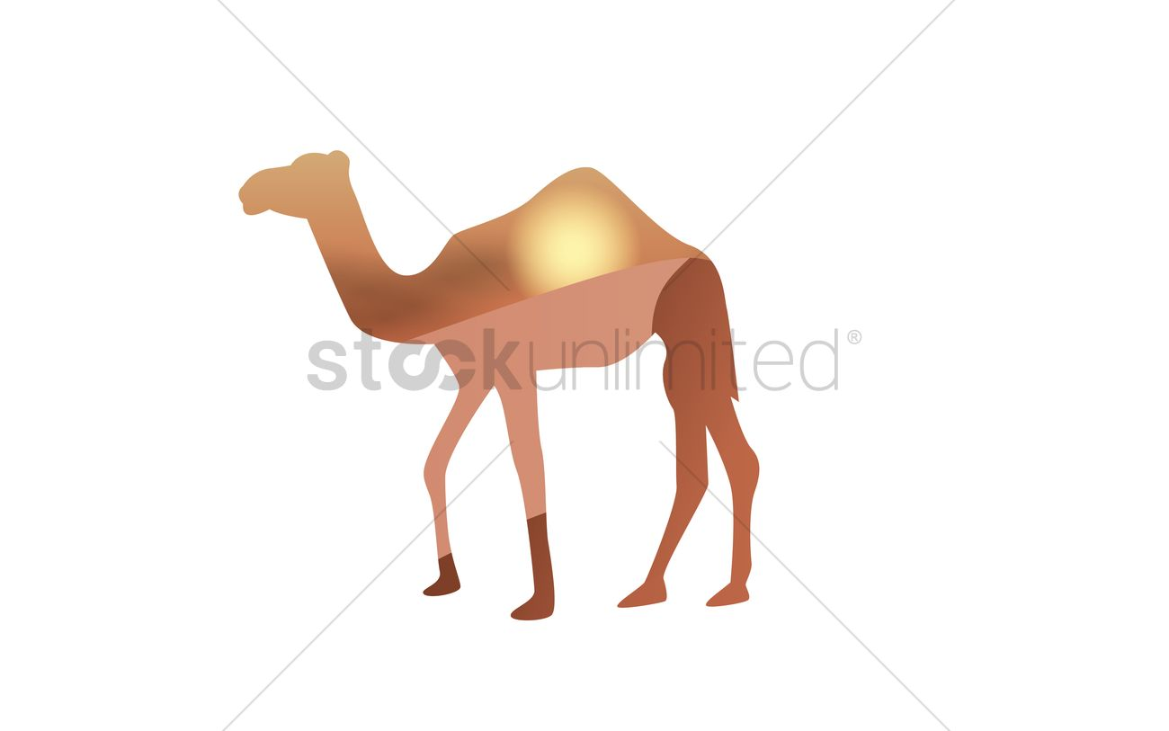 double exposure of camel and desert vector image 1569279