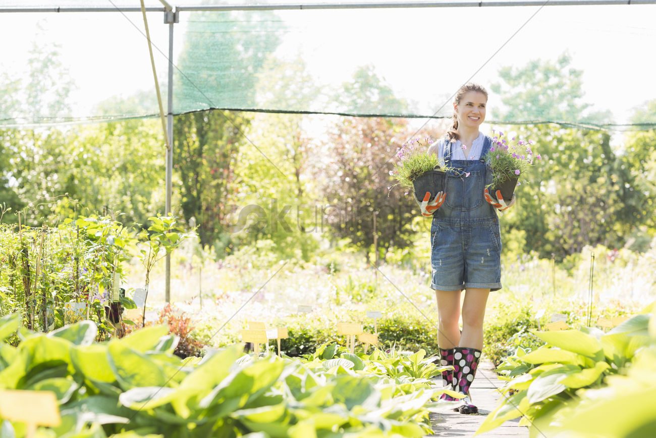 Full Length Of Gardener Looking Away While Holding Potted Plants At Greenhouse Stock Photo