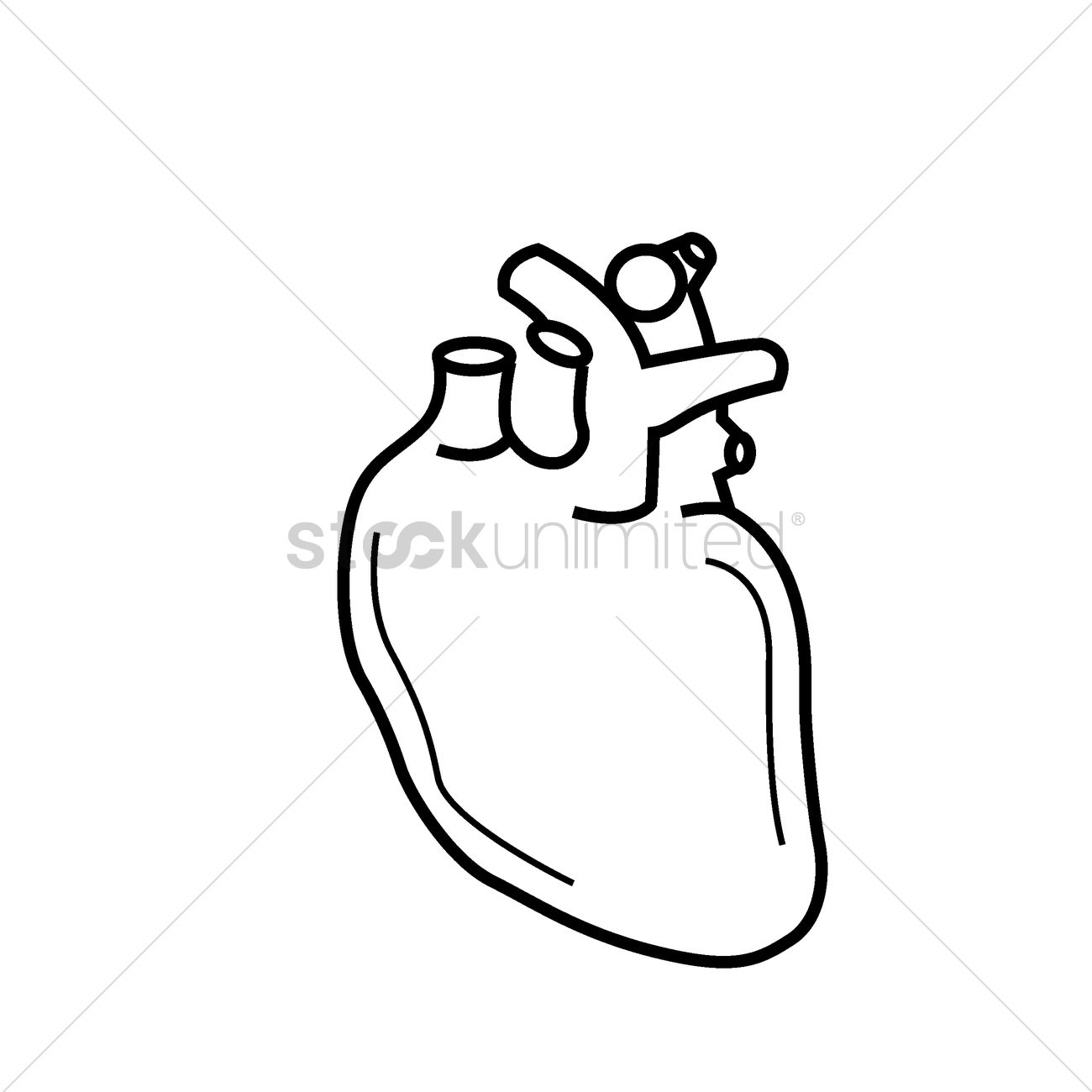 Human heart Vector Image - 1523043 | StockUnlimited