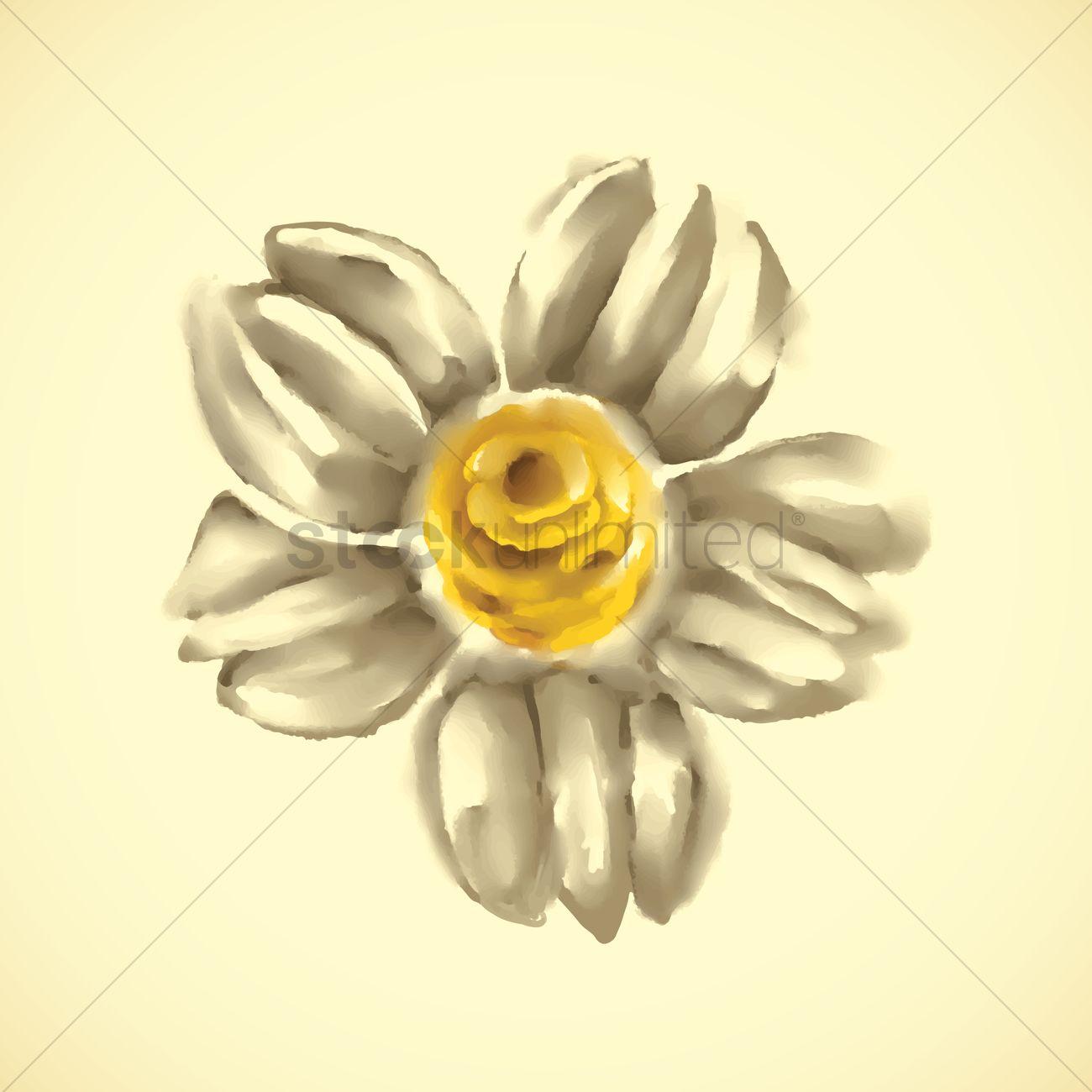 Jasmine Flower Vector Image 1626931 Stockunlimited