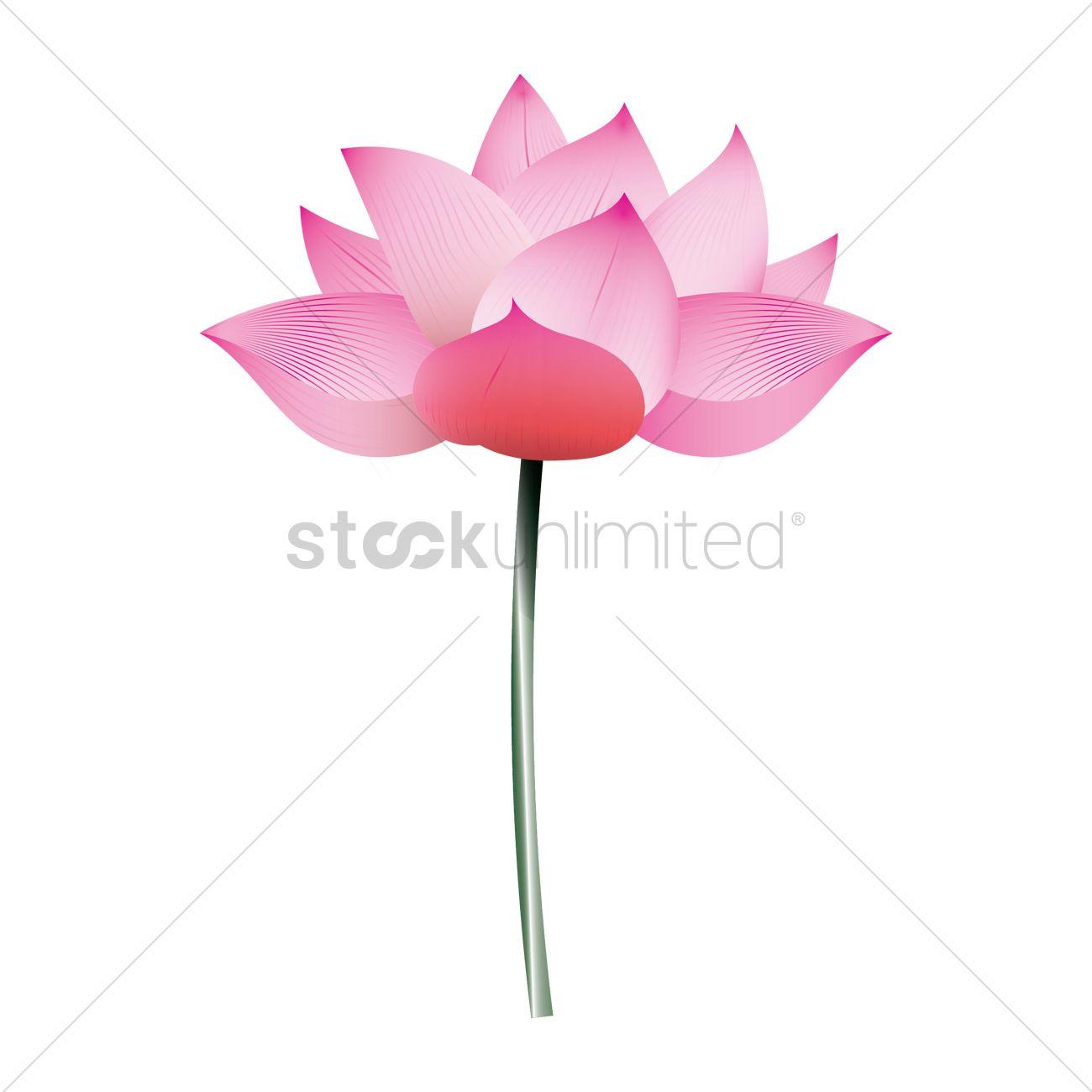 Lotus flower vector image 1937087 stockunlimited lotus flower vector graphic izmirmasajfo