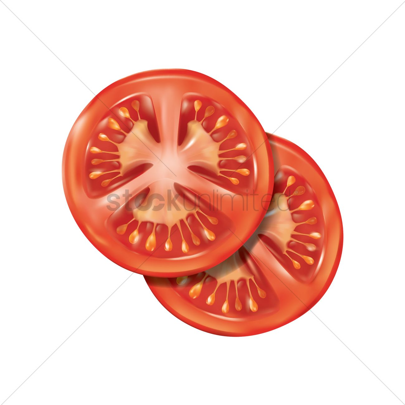 tomato slice vector image 1815051 stockunlimited