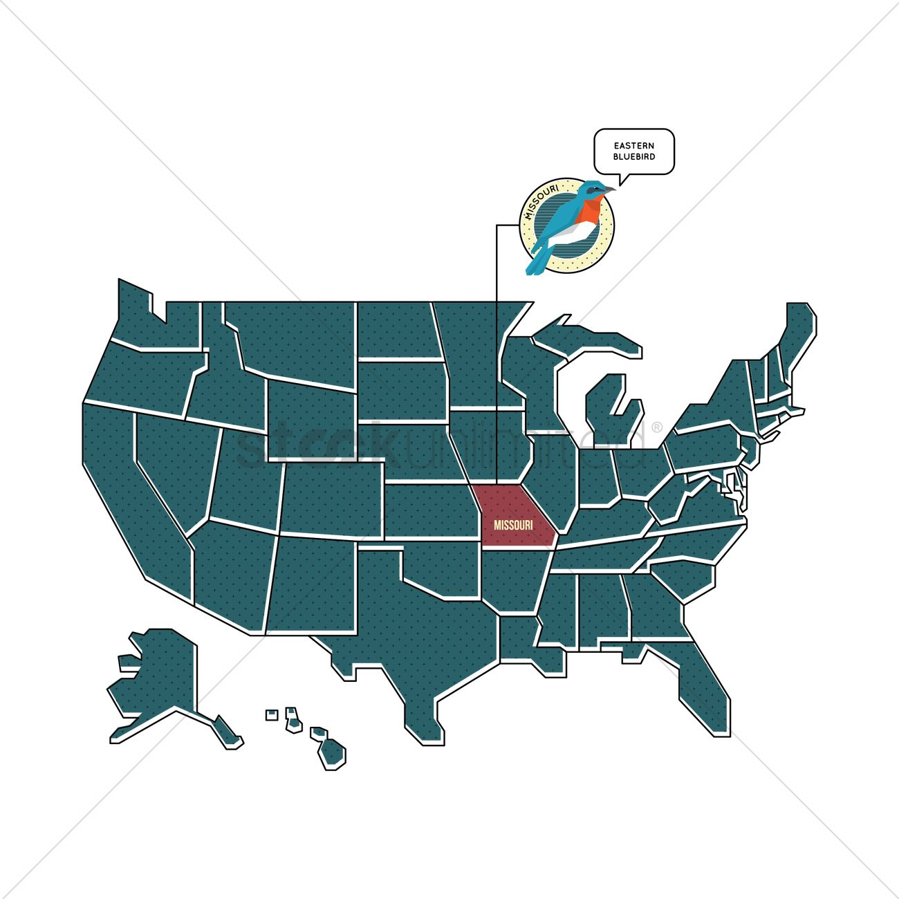 Us map with missouri state bird Vector Image 1567463 StockUnlimited