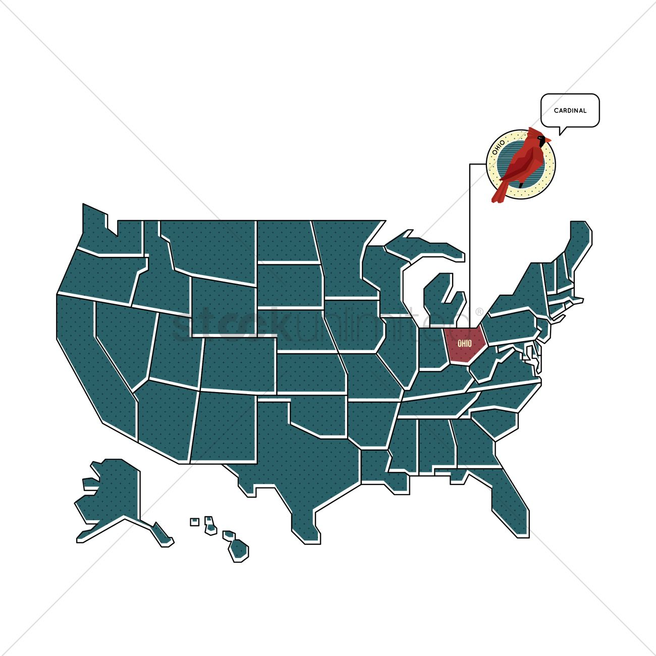 Us Map With Ohio State Bird Vector Image 1567467 Stockunlimited - Ohio-in-the-us-map