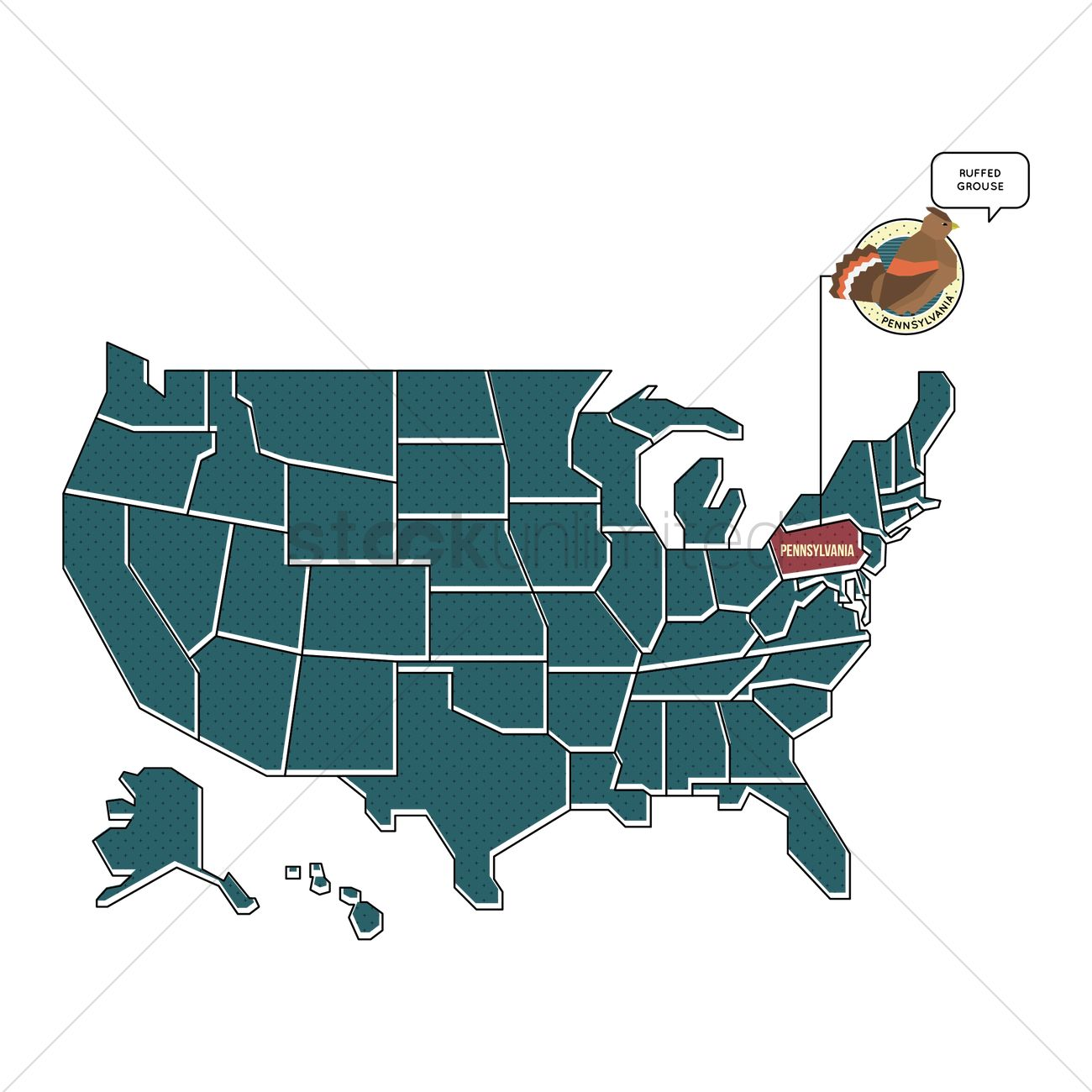 Us Map With Pennsylvania State Bird Vector Image 1567475 - Pennsylvania-on-the-us-map