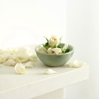 A bowl of white roses with a few petals scattered beside the bowl