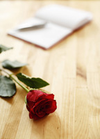 Book and a red rose on the table