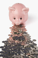 Coins in front of a piggy bank