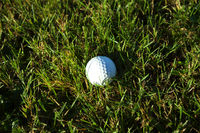 Golf ball on wet lush fairway