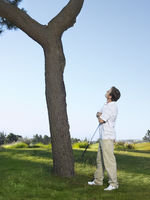 Popular : Golfer looking for ball in tree