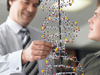 Teacher looking at student s dna model close up
