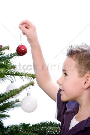 Bliss : A boy decorating the christmas tree
