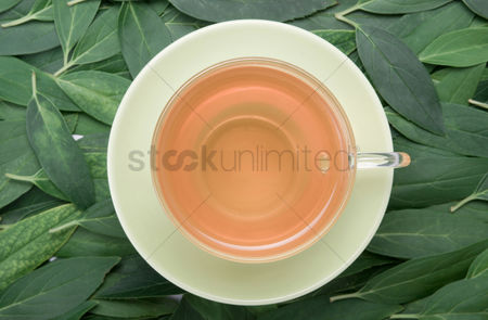Refreshment : A cup of tea with fresh green tea leaves in the background
