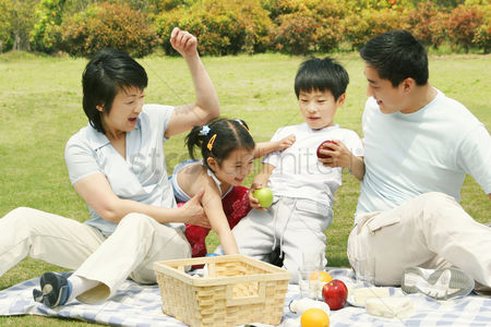 Grass : A family picnicking in the park