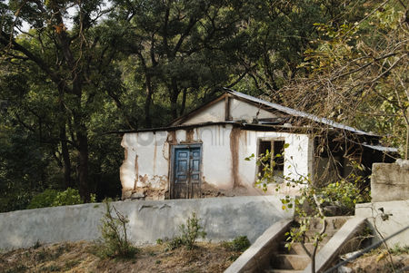 Weathered : Abandoned house in a forest  vaishno devi  katra  jammu and kashmir  india