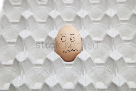 Egg tray : Anthropomorphic brown egg in empty carton