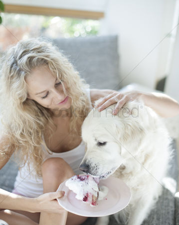 Domesticated animal : Beautiful woman feeding cake to dog in house